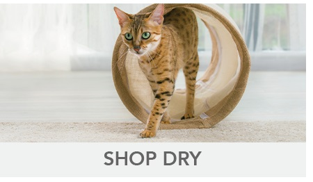 Pro Plan Cat Dry