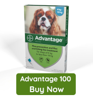 Advantage 100