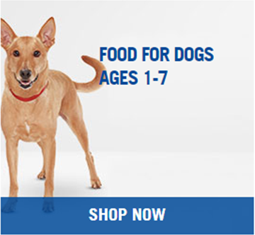 Hills Adult Dog Food