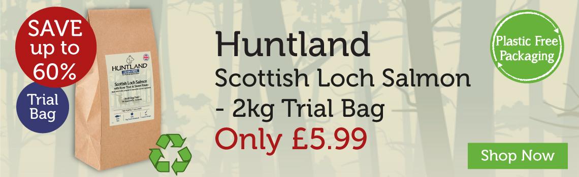 Huntland banner