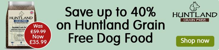 Huntland