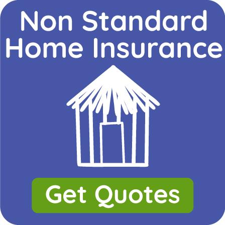 Non Standard Insurance