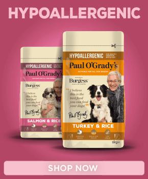 Paul O'Grady's Hypoallergenic