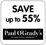 PaulOGradyBlackFriday