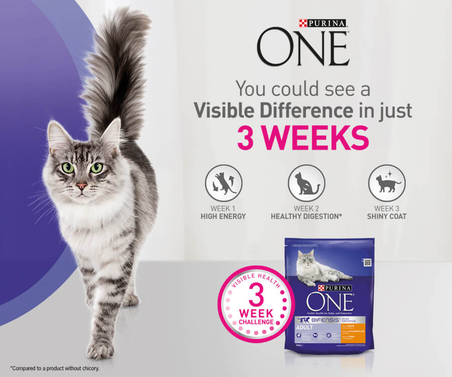 Purina ONE Header