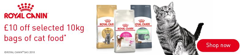 Royal Canin Banner