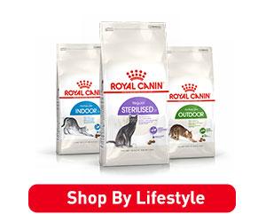 RoyalCanin Cat Lifestyle