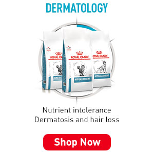 RoyalCanin VetDiet Dermatology