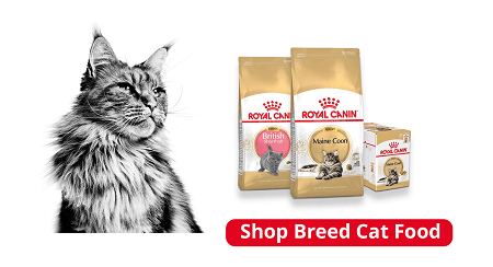 Royal Canin Breed Cat Food