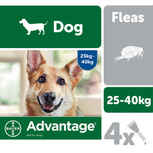 advantage large brown dogs fleas