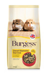 Burgess Dwarf Hamster Harvest food