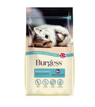 Burgess Rich in Chicken Dry Kitten Food - 1.5kg