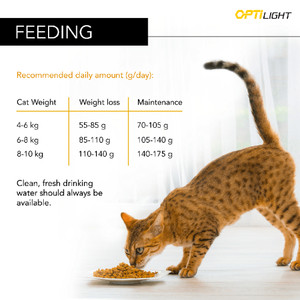 Pro Plan Turkey Light Dry Cat Food