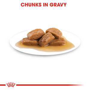 ROYAL CANIN® Maxi Adult (in gravy)