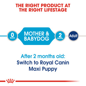 ROYAL CANIN® Maxi Mother Baby Food