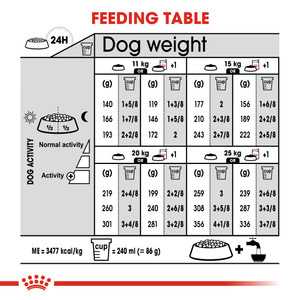 dry adult dog food feeding table