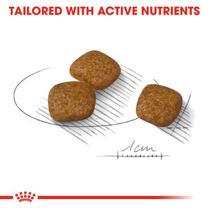 tailored with active nutrients