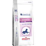 Royal Canin Pediatric Starter Giant Dog Food - 14Kg